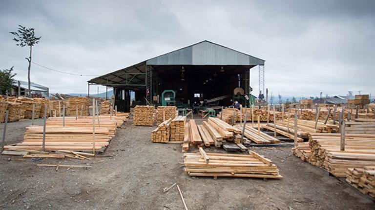 DESARROLLO: Preparan Jornada de construcción de viviendas con madera ...